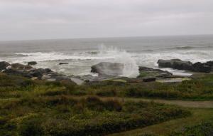 paul transitional sea