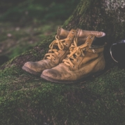 a pair of hiking boots sitting at the base of a tree on moss with a metal cup with a handle next to them